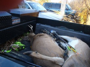 Illegals: 8 point buck, bow with dilatpidated arrows. 17 caliber rifle with only 9 of 50 rounds left, and a truck, all the tools of a night-shooting crew.