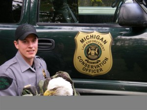 CO Kevin Postma with eagle struck by a car. Officers Postma and Wicklund wrapped the bird in a blanke and hauled it off to the rehabber.