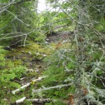 Use your eyes to find Copper Falls poor rock piles