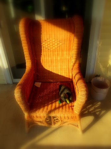 We stopped at a house to talk about nearby problems and a saw the decoy int he chair in the morning light and just had to get it on camera. Would make a great painting as well.