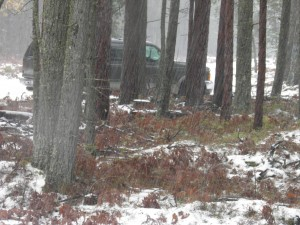 Midday Squalls on Seven Mile Fire Road