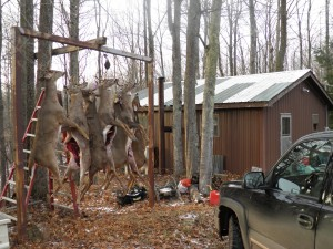 This camp had 11 hunters, 8 bucks, five of which were 8 points. They said they passed up several more bucks. Old camp, all successful, all following the rules, all safe, priceless.