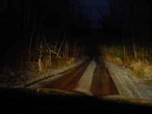 The night road we travel.