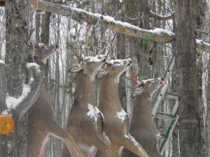 Northern Iron County deer camp buck pole
