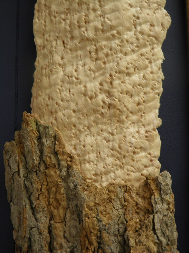 Ever see bird's eye maple up close? Three shots give you an idea of what it looks like raw. Very beautiful stuff.
