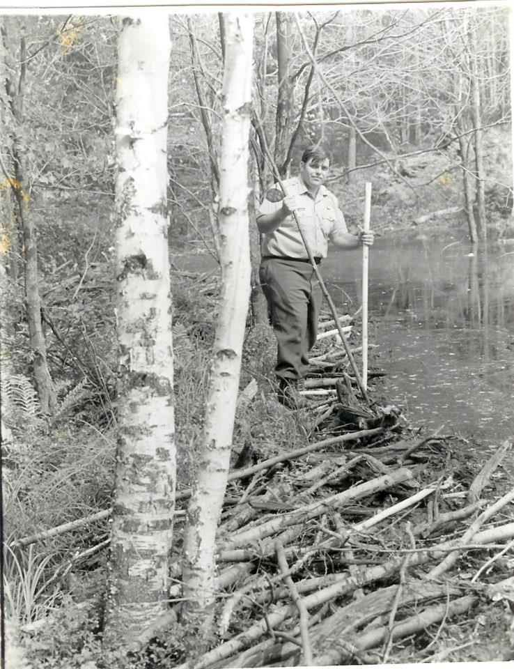game warden, clearing beaves
