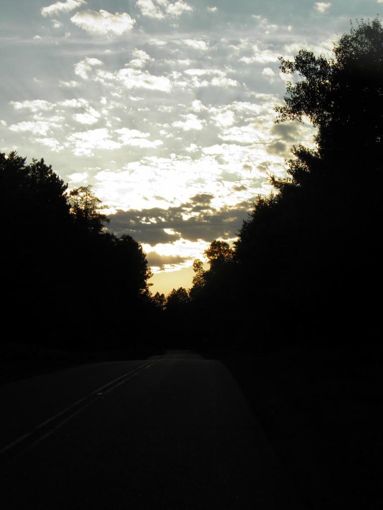 The darkening road.