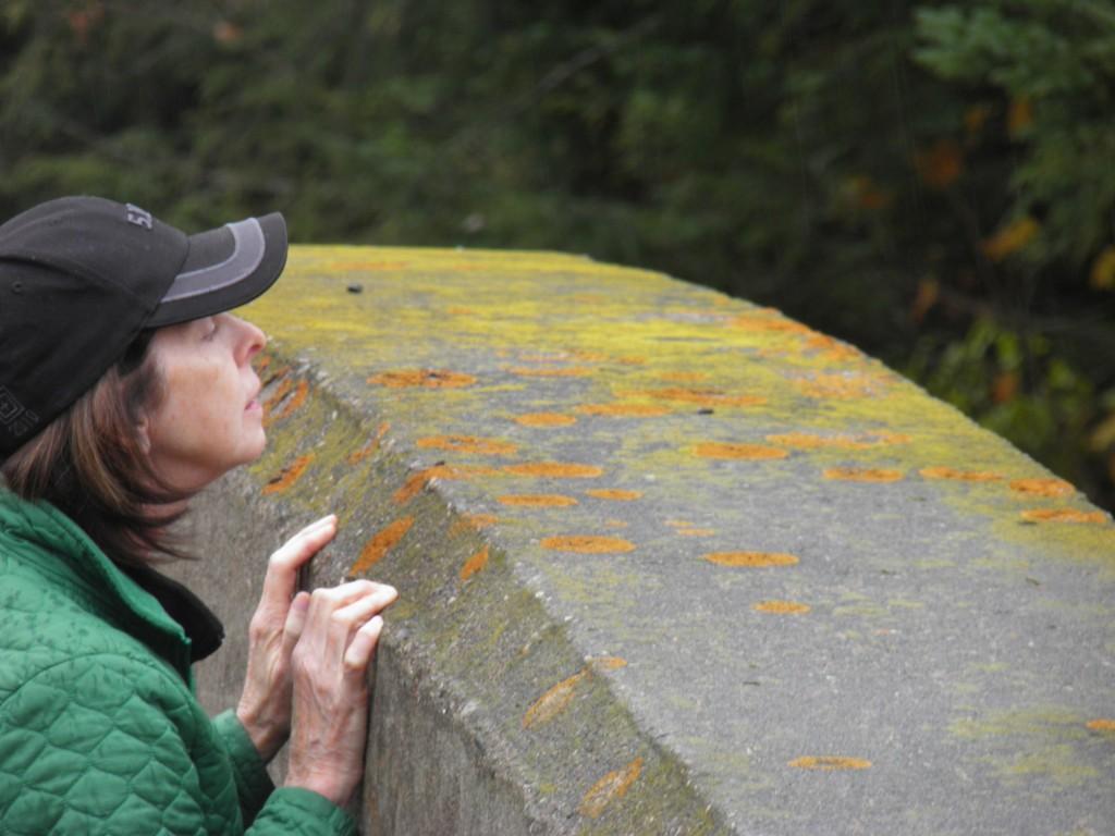 She's liken her lichen.