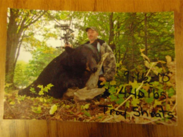 400 plus pound bear from Houghton Co.