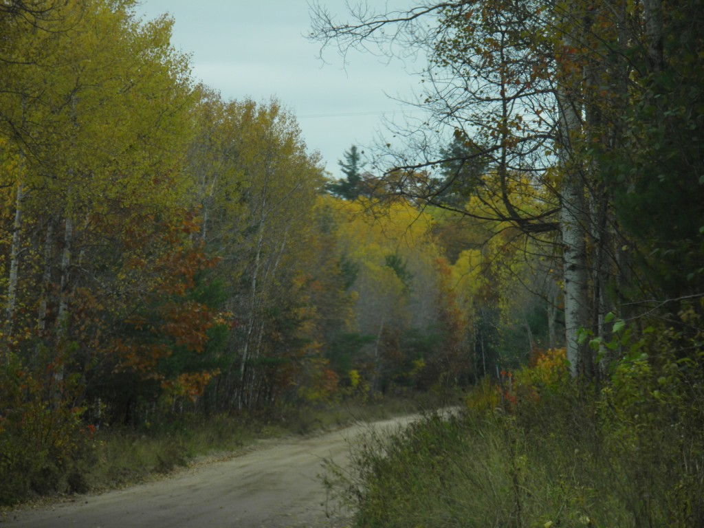 Baraga Plains Road