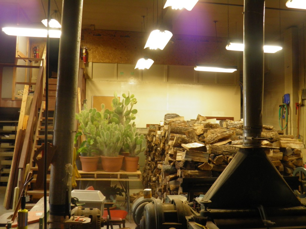 Stack 2: Inside main maintenance shop and the pet cacti collection.
