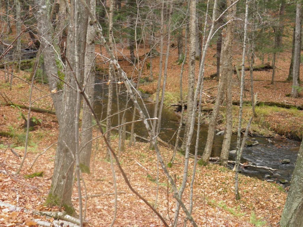 The creek runs through it.