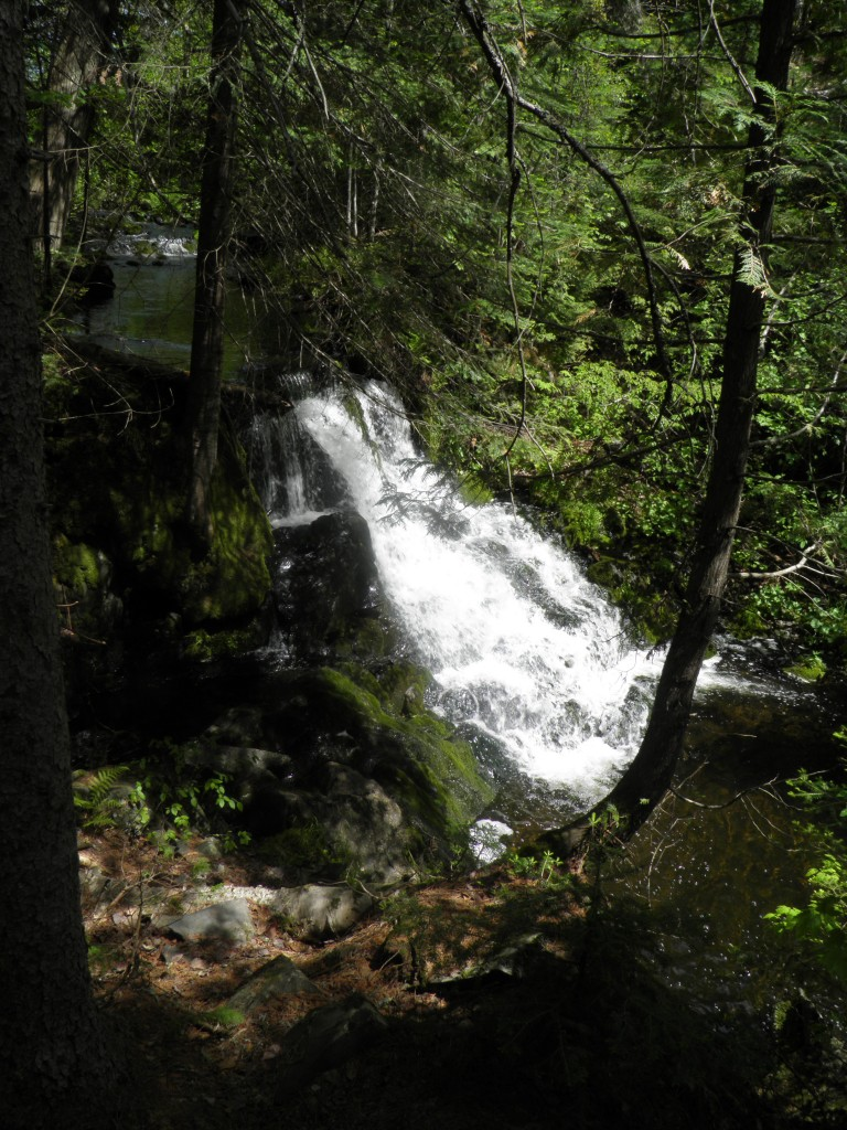 Ogemaw Falls Profile