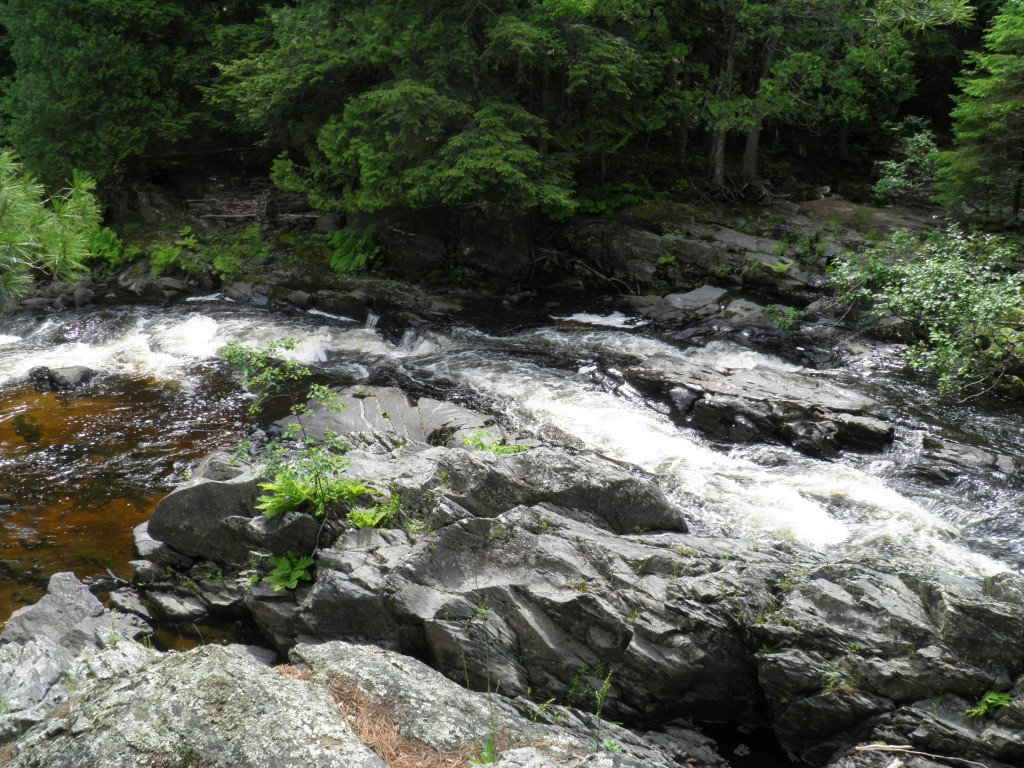start of the lower chutes, below the oxbow